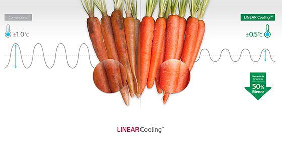 Zanahorias muestran la variación de temperatura usando el sistema Linear Cooling