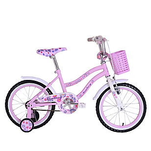 Bicicleta Aro 1 Fantasy 12