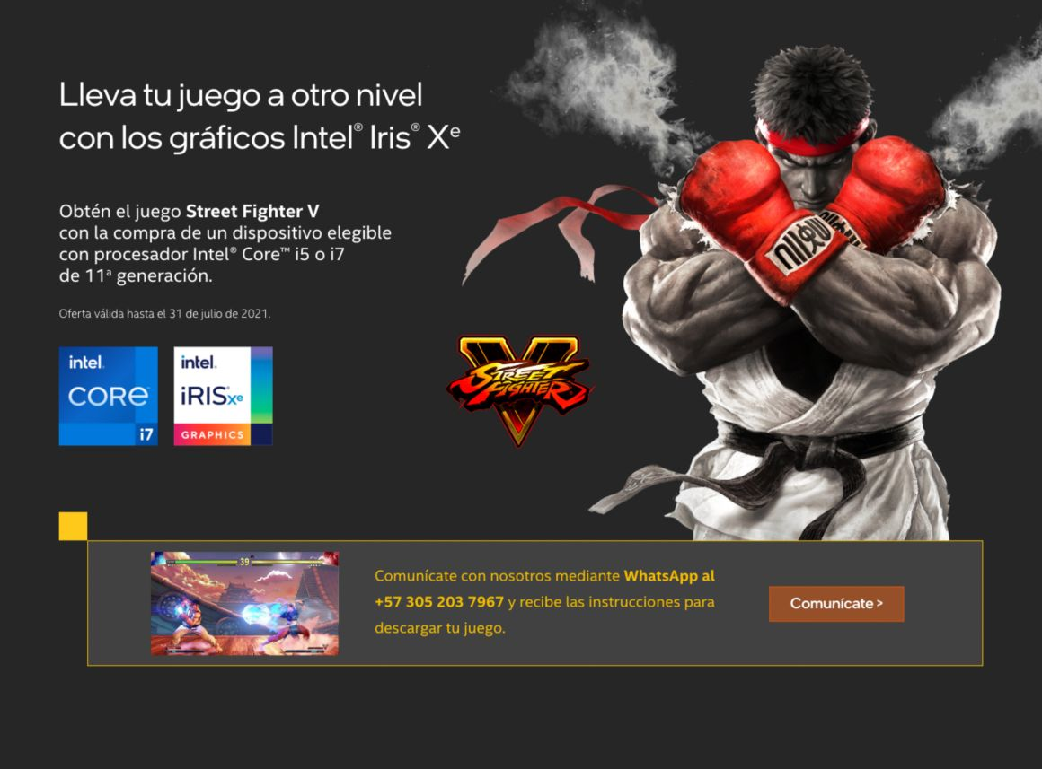 11a generación Graficos Iris Xe Street Fighter