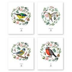 BENDITO - Set 4 Láminas Aves de Chile