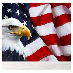AVERY - American Flag  Bald Eagle Paper Ws-42545