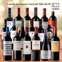 EL MUNDO DEL VINO - 18 vinos Valle del Maipo. Despacho gratis