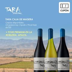 Ventisquero - Cupón para Caja de 6 vinos Tara + REGALO Tour premium Viñedo La Robleria Apalta, incluye despacho RM