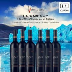 Ventisquero - Cupón para 6 Botellas Grey + Cata Virtual con enólogo Viña Ventisquero , incluye despacho RM
