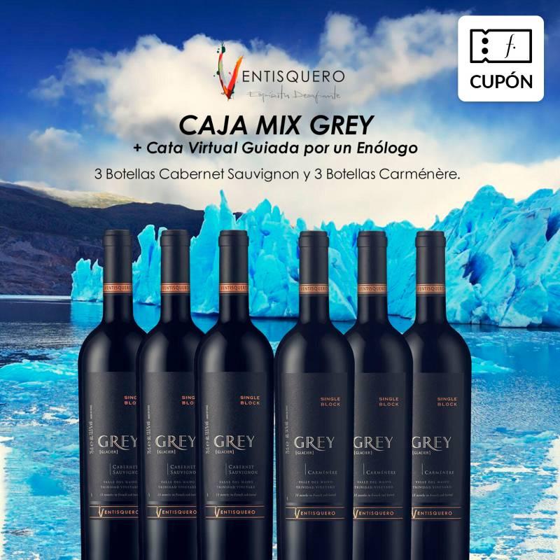 Ventisquero - 6 Botellas Grey + Cata Virtual con enólogo Viña Ventisquero , incluye despacho RM