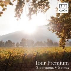 COUSIÑO MACUL - Cupón para Caja de 6 vinos Antiguas Reservas CS+ Tour Premium para 2 personas, incluye despacho al Gran Santiago