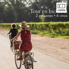 COUSIÑO MACUL - Cupón para Caja de 6 vinos de Viña Cousiño Macul + Tour en Bicicleta para 2 personas, incluye despacho al Gran Santiago