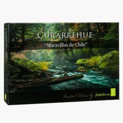 FORANIA - Puzzle Curarrehue Patagonia Chile