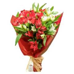 Regalar Flores - Ramo 20 Alstroemeria