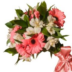 Regalar Flores - Gerberas y Alstroemerias