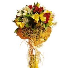 Regalar Flores - Ramo Alstroemerias