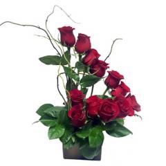 Regalar Flores - Escalera de Rosas