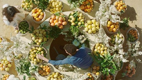 Foto ingredientes sustentables y conscientes para MY WAY Armani colección mundo