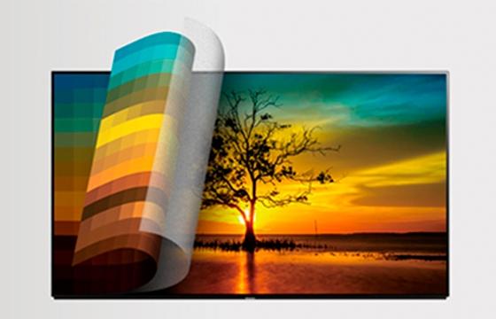 TV paisaje de un árbol al atardecer y con muchos matices de colores