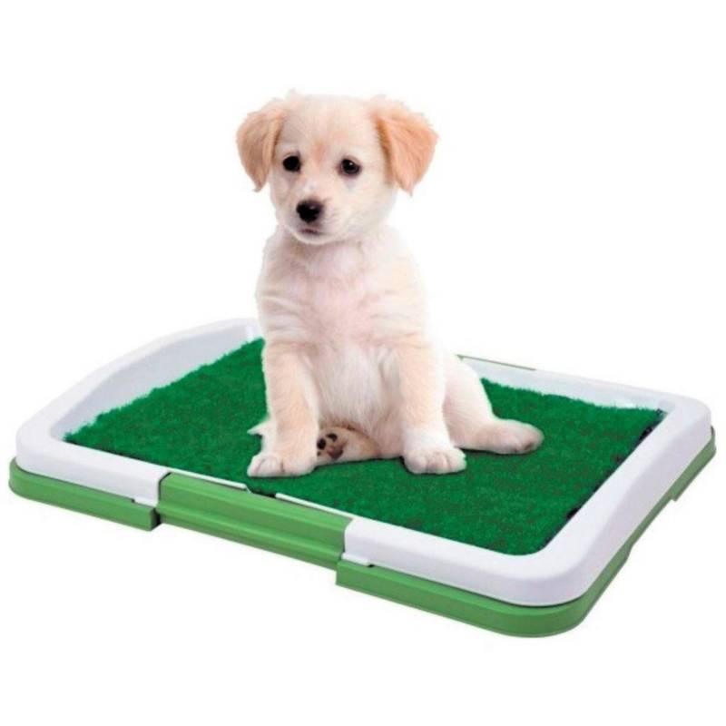 GENERICO - Baño Ecologico para Mascotas Perros Puppy
