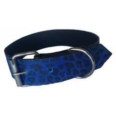 BR.EEDS - Collar Para Perros.