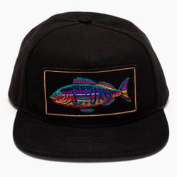 Fish Jockey