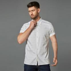 Dressy Shirt Collection