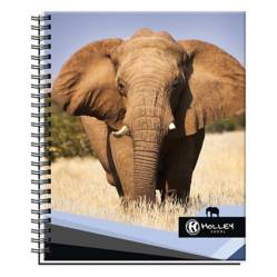 Holley Skool - Cuaderno Universitario Elefante