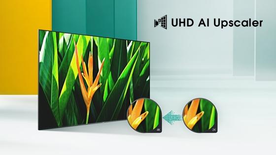Hisense TV  H6 UHD Upscaler