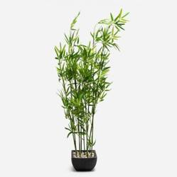 Planta Bamboo 122 cm