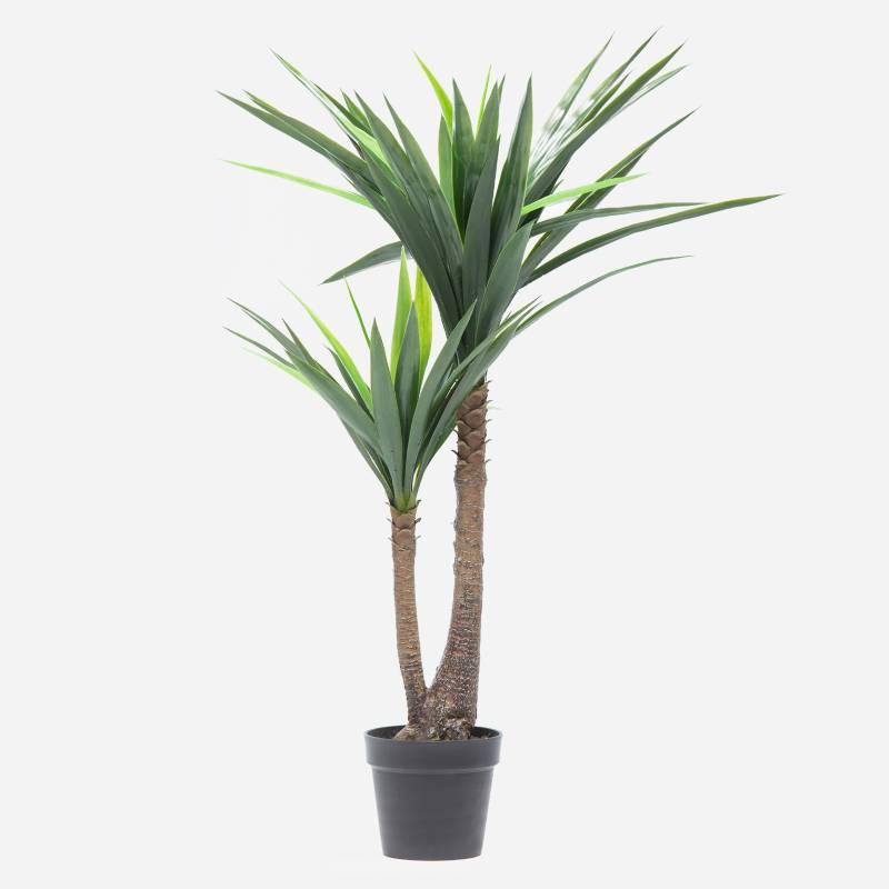 Mica - Planta Yuca 120 cm