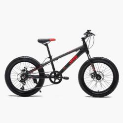 Jeep - Bicicleta Infantil Aneto Aro 20