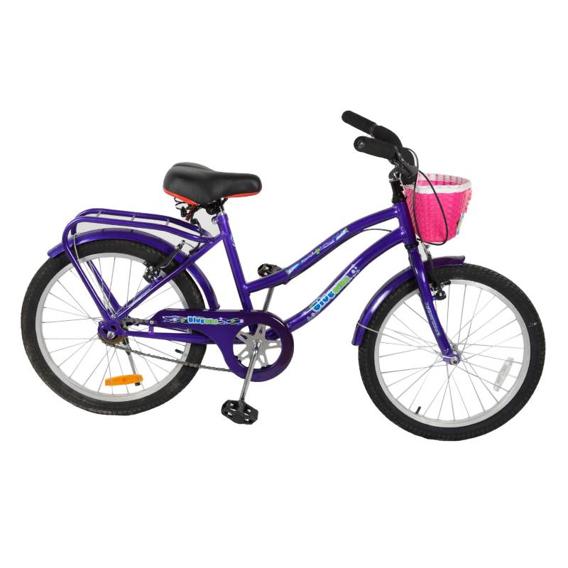Blue bike - Bicicleta full R20