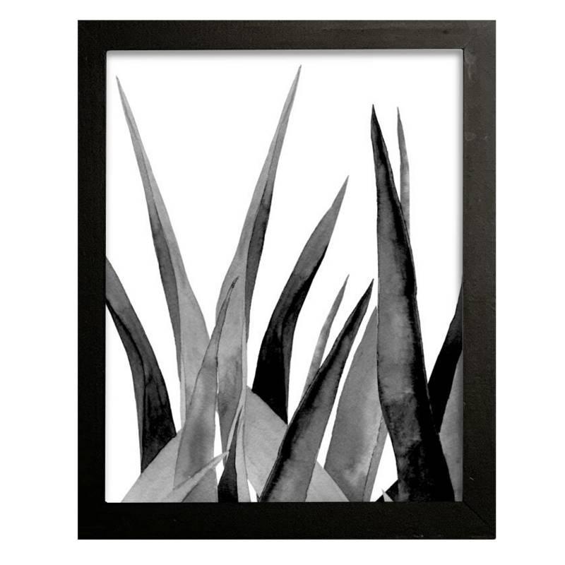 Cuadro botánico 42x32 cm