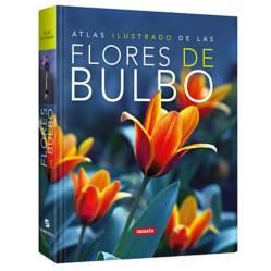 Lexus - Atlas ilustrado de las flores de bulbo