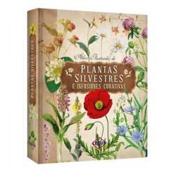 Lexus - Atlas ilustrado de Plantas silvestres e infusiones curativas