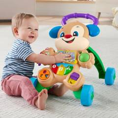 Fisher Price - Fisher Price Perrito Andadera De Aprendizaje