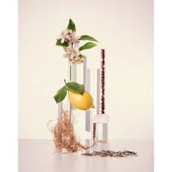 Perfume L'eau Women EDT 100 ml