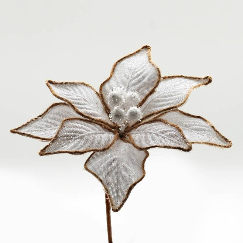 PINCASO - Poinsettia Met Bordeada 25 cm