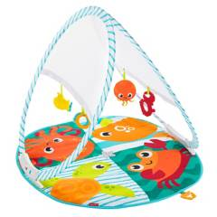 Fisher Price - Gimnasio Portátil Para Bebé