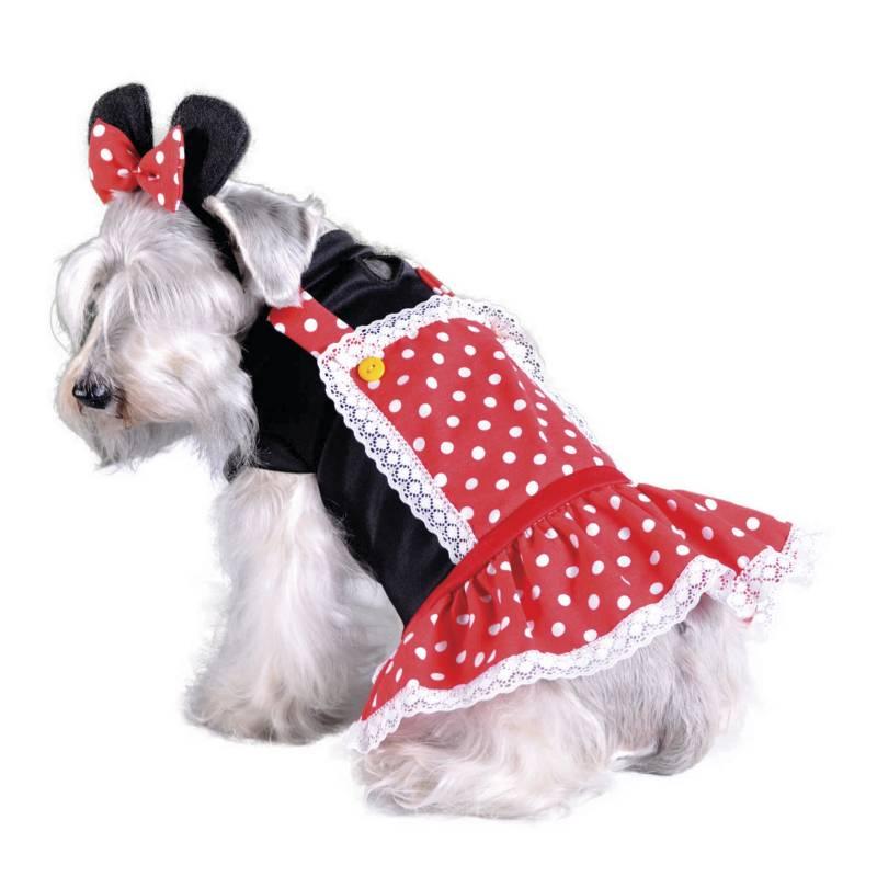 Fantastic Night - Disfraz de mascota