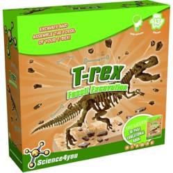 T-rex fossil excavation
