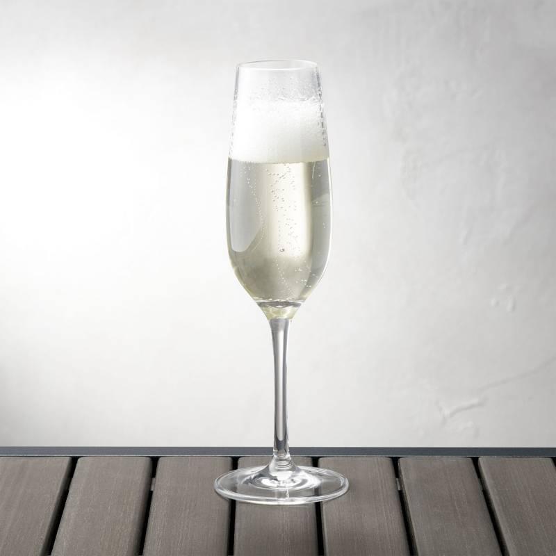 Crate & Barrel - Copa de Acrílico para Champagne 266ml