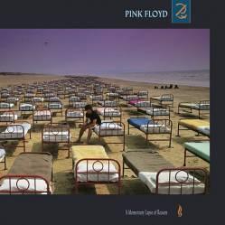 Elite Entretenimiento - Pink Floyd  A Momentary Lapse Cd