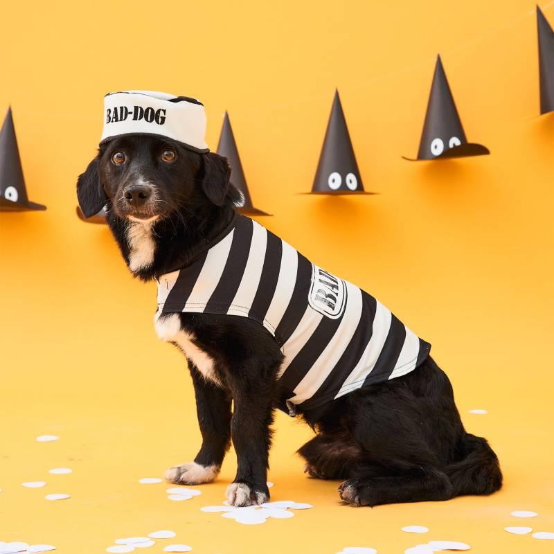 Yamp - Disfraz para perro de preso