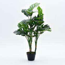 Mica - Plantas Monstera 100 cm