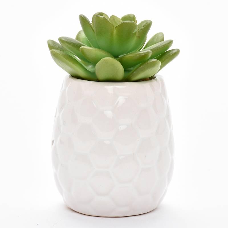 Mica - Pot Suculenta Porcelana