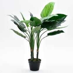 Mica - Planta Filodendro 100 cm 20 hojas