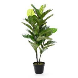 Mica - Planta Hoja de Violín 100 cm