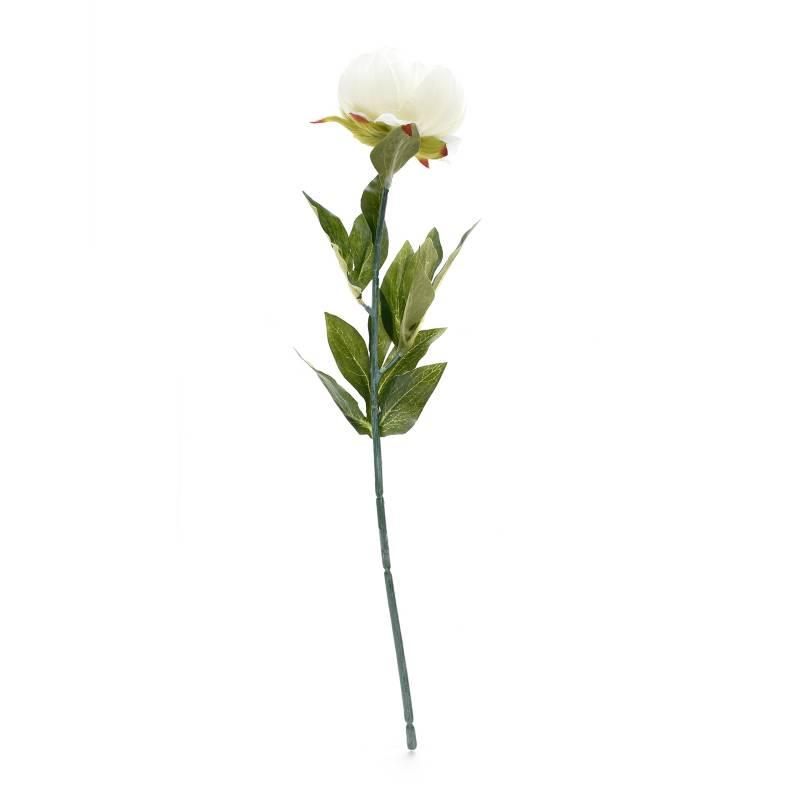 Mica - Rosa Blanca 48 cm