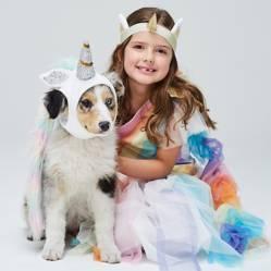 Yamp - Disfraz de Unicornio para perro