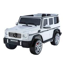 Mercedes-Benz - Mercedes-Benz G65 Amg 12V