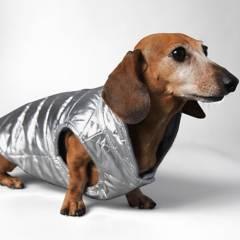 THE STRIPED DOG - chaleco para perros bushwick talla xs