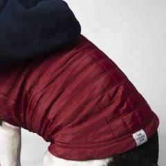 THE STRIPED DOG - chaqueta para mascotas noho talla l