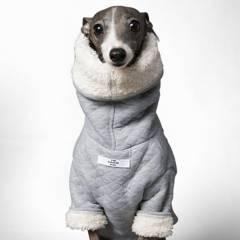THE STRIPED DOG - suéter para mascotas uptown talla xs